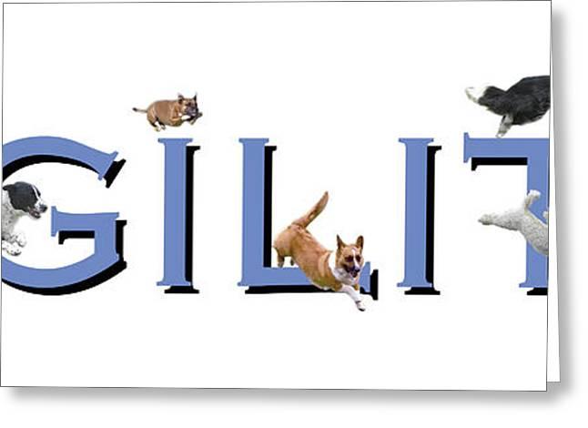 Dogs Digital Art Greeting Cards - Agility Blue Greeting Card by Brad Thomas