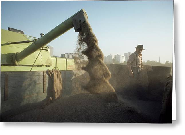 West Berlin Greeting Cards - Agricultural Equipment Spews Wheat Greeting Card by Cotton Coulson