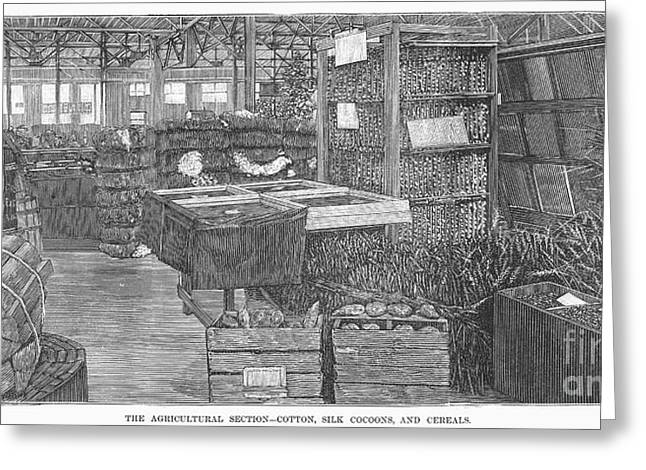 Cocoon Greeting Cards - Agricultural Fair, 1883 Greeting Card by Granger