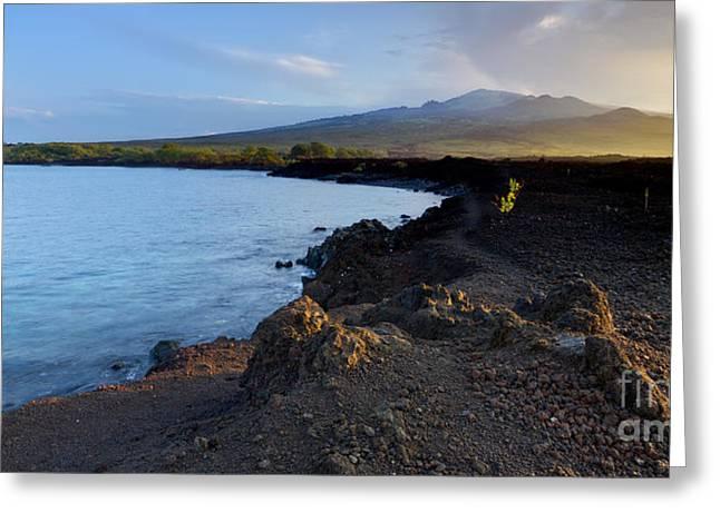 Lava Rock Greeting Cards - Ahihi Preserve and Haleakala Maui Hawaii Greeting Card by Dustin K Ryan