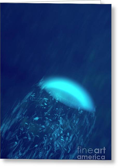 Air Bubbles Greeting Cards - Air bubbles in water Greeting Card by Sami Sarkis