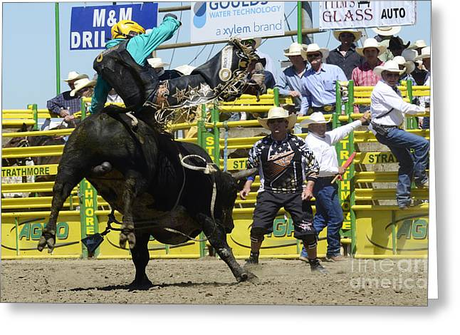Western Life Greeting Cards - Rodeo Airborne Division Greeting Card by Bob Christopher