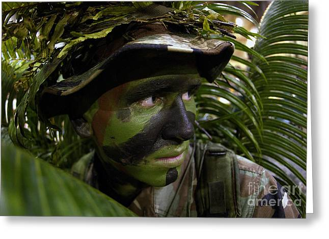 Blending Photographs Greeting Cards - Airman Conceals Himself By Blending Greeting Card by Stocktrek Images