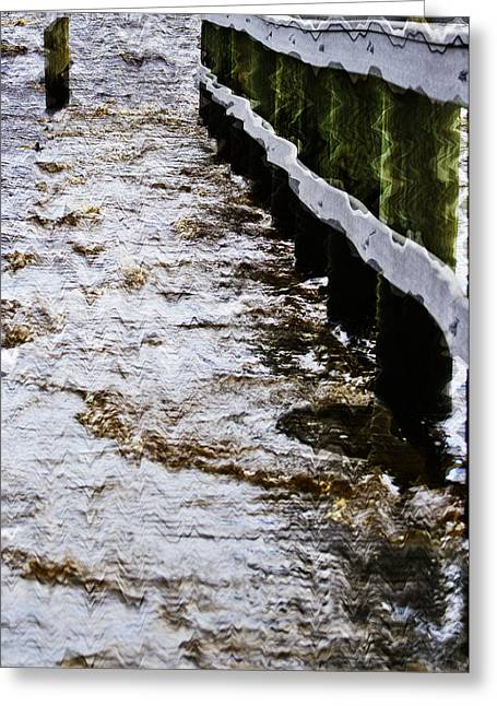 River Flooding Greeting Cards - Alafia River Flash Back Greeting Card by Lawrence Ott