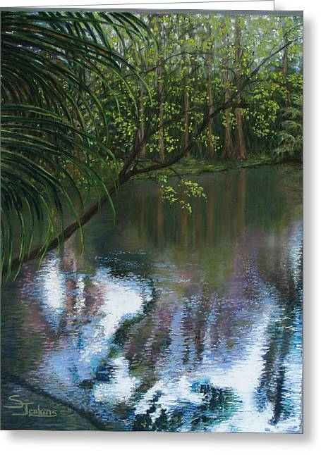 Reflections Pastels Greeting Cards - Alafia River Reflection Greeting Card by Susan Jenkins