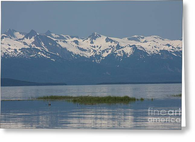 Snow Scence Greeting Cards - Alaska Mountain Range Greeting Card by Brenda Doucette