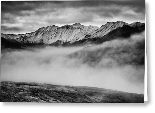 Denali Greeting Cards - Alaskan Morning Greeting Card by Rick Berk