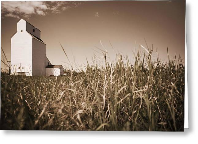 Tone On Tone Greeting Cards - Alberta, Canada A Grain Elevator Greeting Card by Darren Greenwood