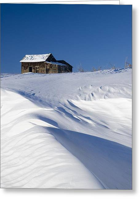 Farm Structure Greeting Cards - Alberta, Canada Abandoned Farm Building Greeting Card by Philippe Widling