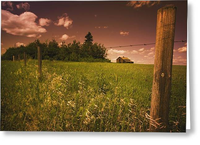 Old Fence Posts Greeting Cards - Alberta, Canada An Old Barn And Fence Greeting Card by Darren Greenwood