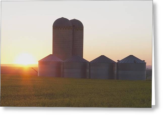 Grain Bin Greeting Cards - Alberta, Canada Grain Bins At Sunrise Greeting Card by Michael Interisano
