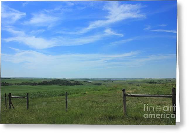 Alberta Greeting Cards - Alberta Prairie and Sky Greeting Card by Jim Sauchyn