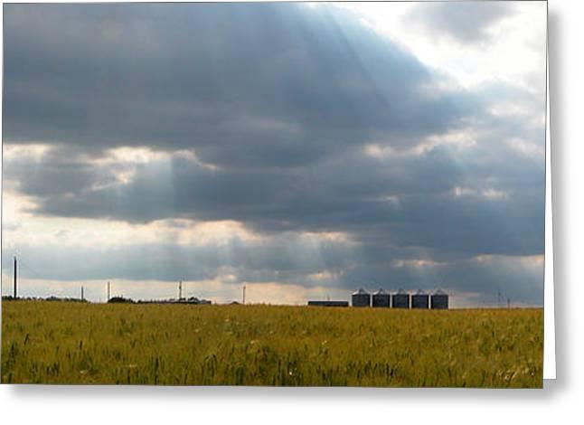 Occupy Beijing. Greeting Cards - Alberta wheat field Greeting Card by Stuart Turnbull