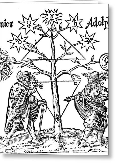 Alchemical Celestial Tree Greeting Card by Science Source