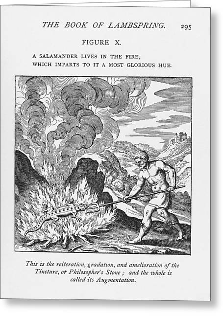 Fire Salamander Greeting Cards - Alchemy Greeting Card by Science, Industry & Businessnew York Public Library