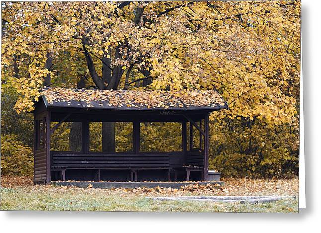 Arbour Greeting Cards - Alcove In The Autumn Park Greeting Card by Michal Boubin
