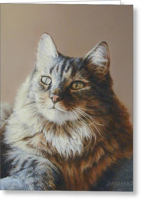 Feline Pastels Greeting Cards - Alexi Maine Coon Greeting Card by Barbara Groff