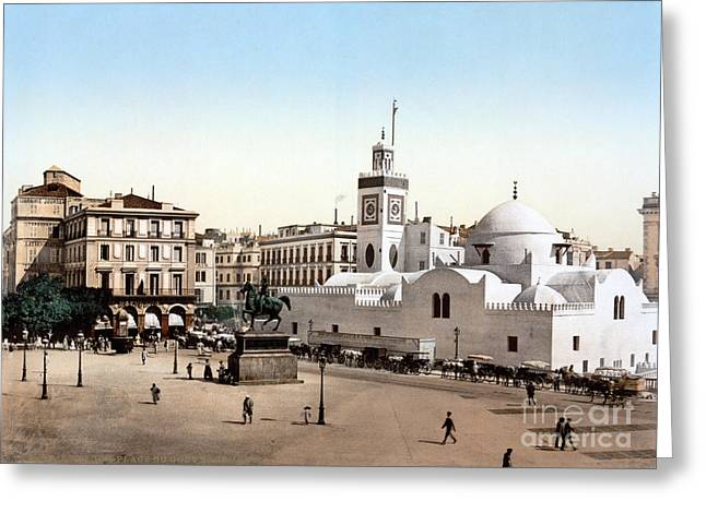 Horse And Buggy Greeting Cards - ALGERIA: ALGIERS, c1899 Greeting Card by Granger