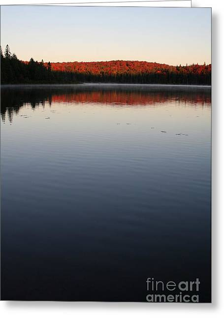 Chris Hill Greeting Cards - Algonquin First Light Greeting Card by Chris Hill