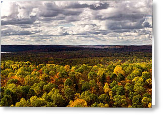 Algonquin Greeting Cards - Algonquin Park Panorama Greeting Card by Cale Best
