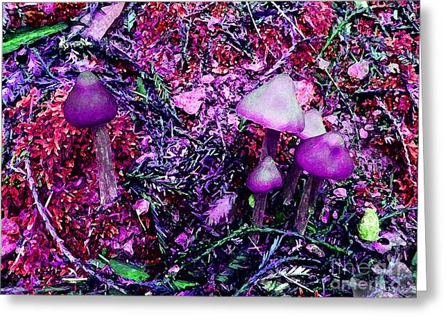 Purple Mushrooms Greeting Cards - Alices Restaurant  Greeting Card by JoAnn SkyWatcher
