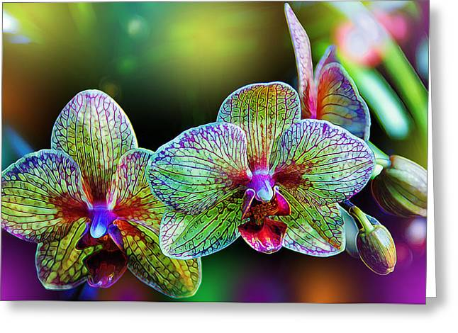 Color Green Greeting Cards - Alien Orchids Greeting Card by Bill Tiepelman