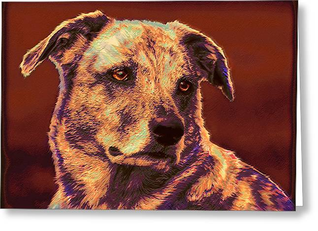 Puppies Digital Art Greeting Cards - All American Mutt 2 Greeting Card by Jane Schnetlage