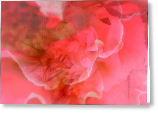 Love Letter Greeting Cards - All my thoughts of you Greeting Card by Kathy Bucari