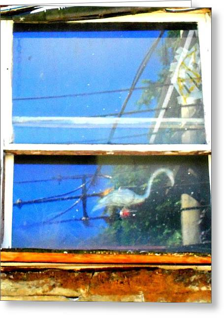 Back Alley Greeting Cards - Alley Window Greeting Card by Randall Weidner