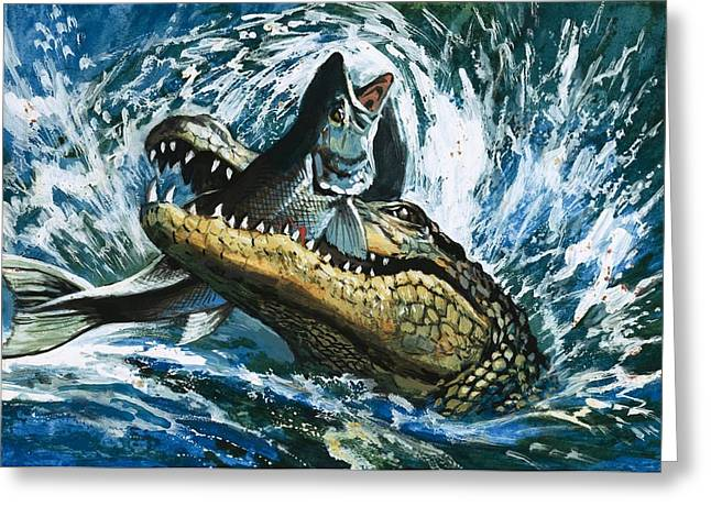 Alligator Eating Fish Greeting Card by English School