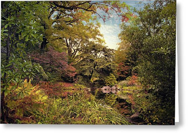 Green Foliage Greeting Cards - Almost Autumn Greeting Card by Jessica Jenney