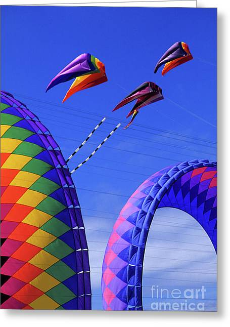 Kites Festival Greeting Cards - Go Fly A KIte 8 Greeting Card by Bob Christopher