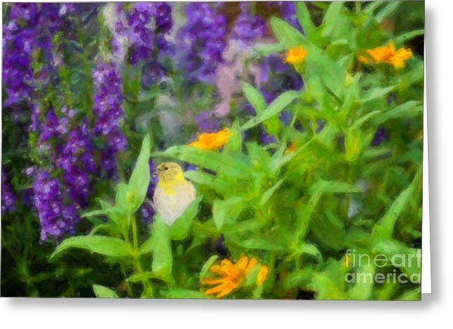 Goldfinch Digital Art Greeting Cards - Alone in the Garden Greeting Card by Betty LaRue