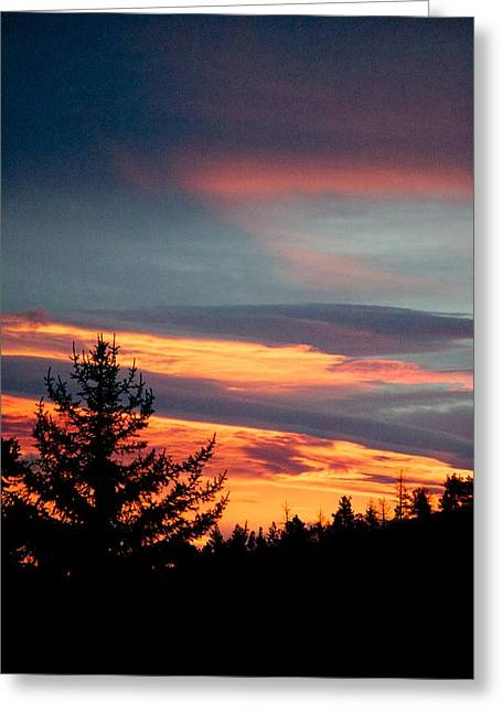 Sunset Posters Greeting Cards - Alone Greeting Card by Kevin Bone
