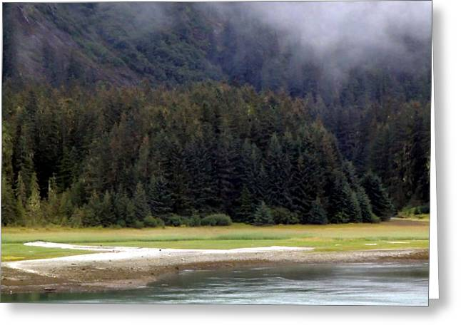 Mystical Landscape Greeting Cards - Along the Alaskan Juneau Road Greeting Card by Mindy Newman