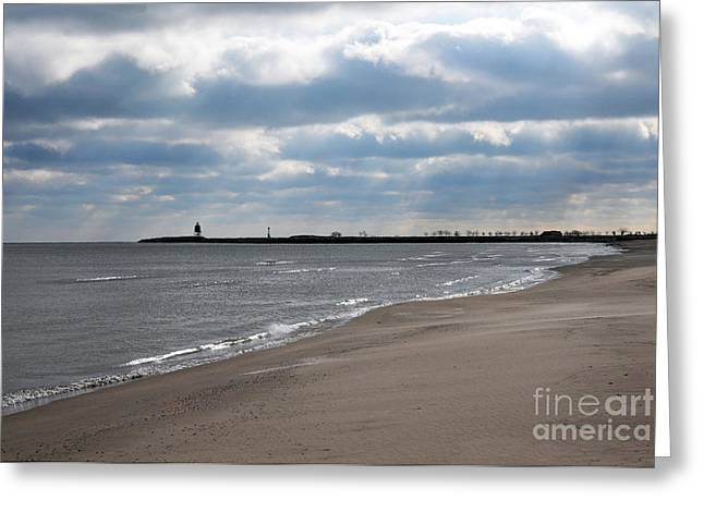 Earth Tone Photographs Greeting Cards - Along The Shore Greeting Card by Dan Holm