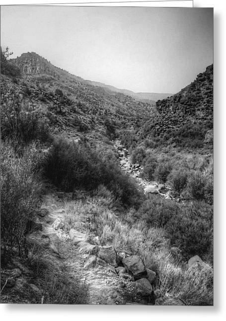 Taos Greeting Cards - Along the Stream Greeting Card by William Wetmore