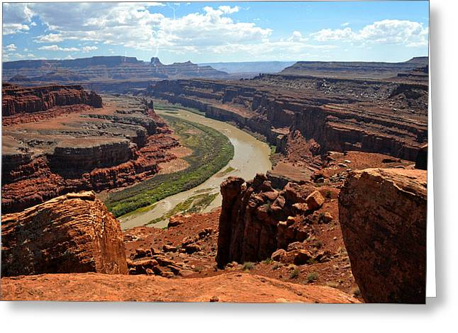 Marty Koch Greeting Cards - Along The White Rim Road Greeting Card by Marty Koch