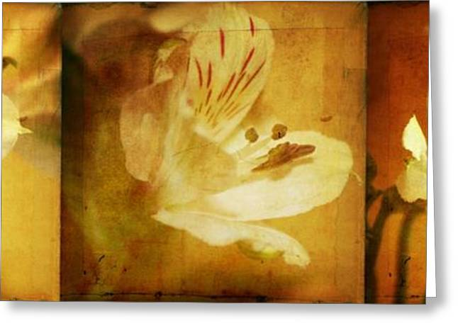Floral Digital Art Greeting Cards - Alstroemerias Greeting Card by Cathie Tyler