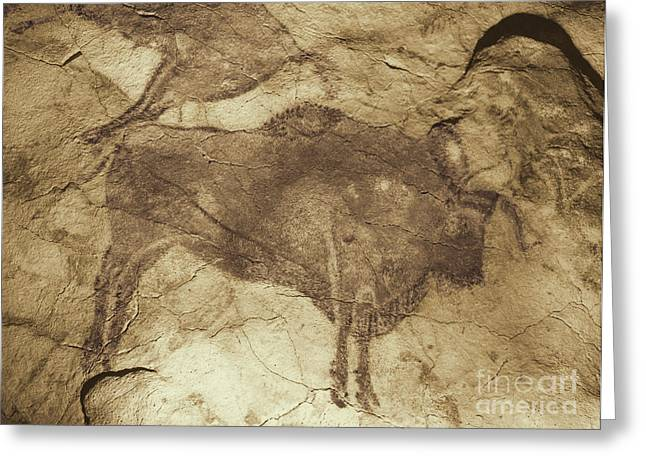 Altamira Greeting Cards - Altamira Cave Paintings Greeting Card by Photo Researchers