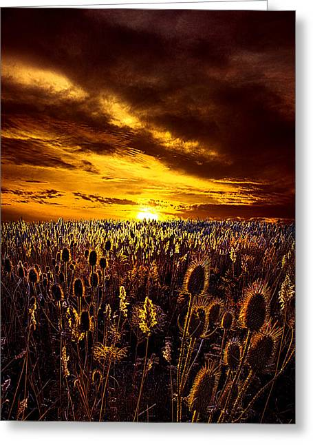 Geographic Greeting Cards - Amazing Grace Greeting Card by Phil Koch