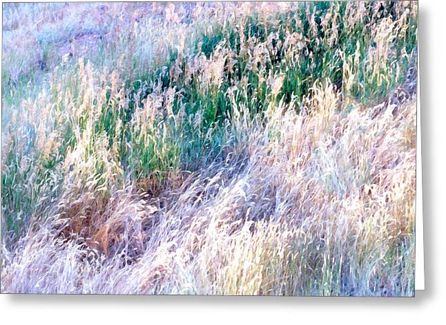 Luminist Greeting Cards - Amazing Grass One Greeting Card by Ric Soulen