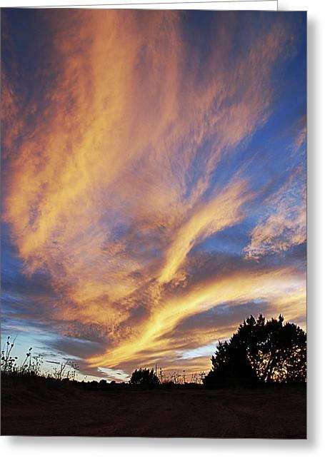 Amazing Sunset Greeting Cards - Amazing Sunset Greeting Card by Melany Sarafis