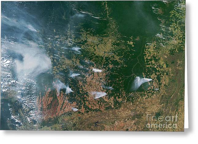 Amazon Basin Forest Fires, Satellite Greeting Card by NASA / Science Source