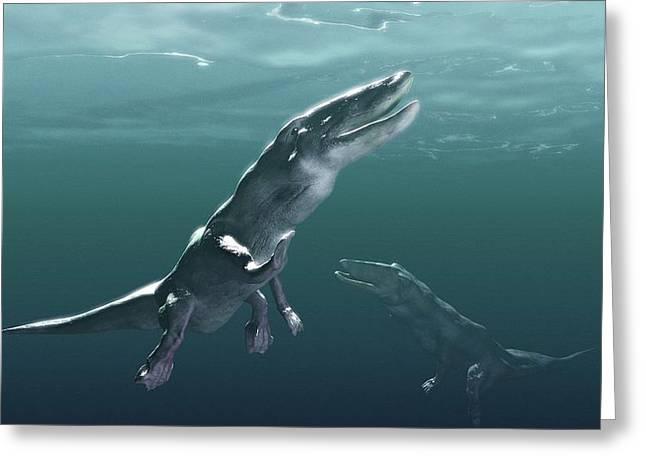 Missing Greeting Cards - Ambulocetus, Whale Precursor, Artwork Greeting Card by Christian Darkin