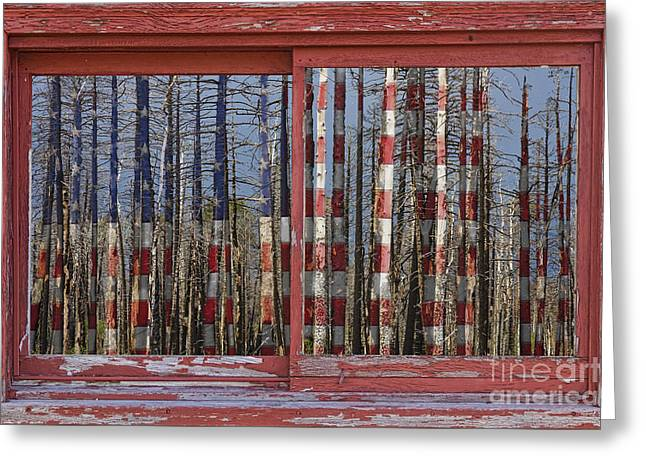 Americano Greeting Cards - America Still Beautiful Red Picture Window Frame Photo Art View Greeting Card by James BO  Insogna
