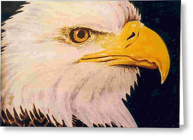 Nature Ceramics Greeting Cards - American Bald Eagle Greeting Card by Dy Witt