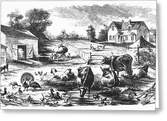 AMERICAN FARMYARD, c1870 Greeting Card by Granger