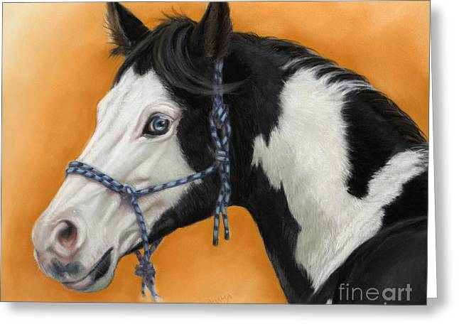 Americans Pastels Greeting Cards - American Paint Horse - soft pastel Greeting Card by Svetlana Ledneva-Schukina