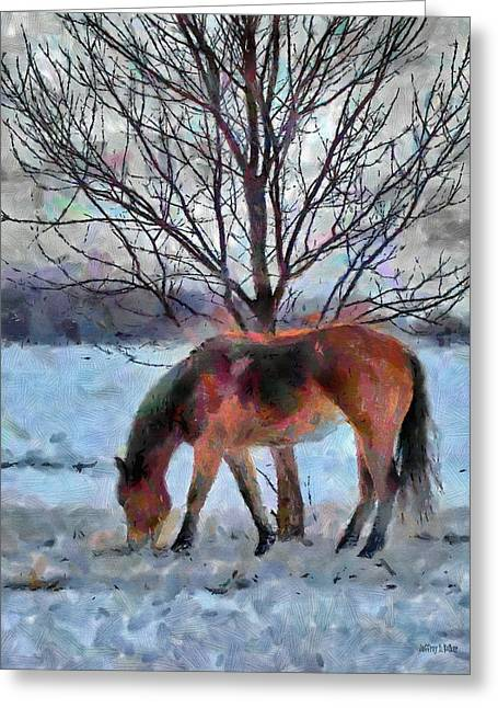 Grazing Snow Greeting Cards - American Paint in Winter Greeting Card by Jeff Kolker